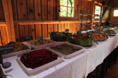 Vegan-Vegetarisches Vorspeisenbuffet, nachhaltige Hochzeit